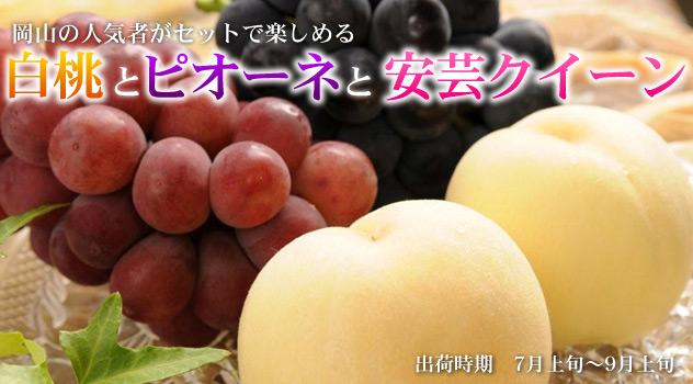白桃とピオーネと安芸クイーン