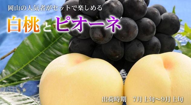 白桃とピオーネ