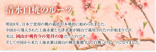 清水白桃のルーツ