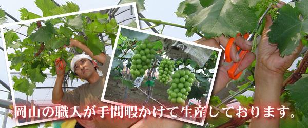 岡山の職人が手間暇かけて生産しています。